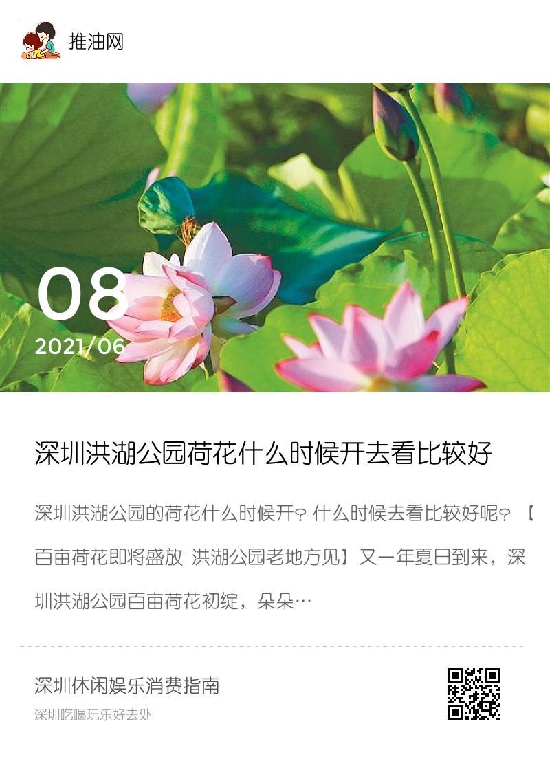 深圳洪湖公园荷花什么时候开去看比较好分享封面